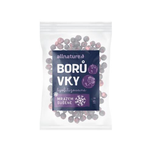 Allnature Blueberry Lyofilized 15 g