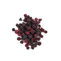 Allnature Freeze Dried Whole Blackberry 15 g